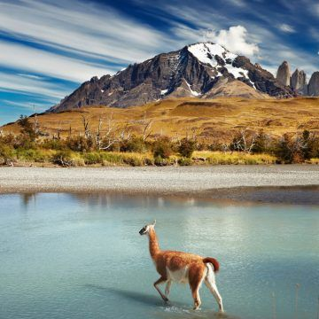 Torres del Paine. The landscape of the park is dominated by the Paine massif.  A young 12 million year old mountain range.